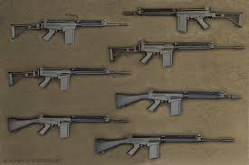 Armes de tir d'epaule